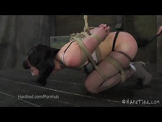Cute brunette gets flogged in bondage