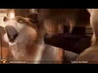 A raposa E o cavalo